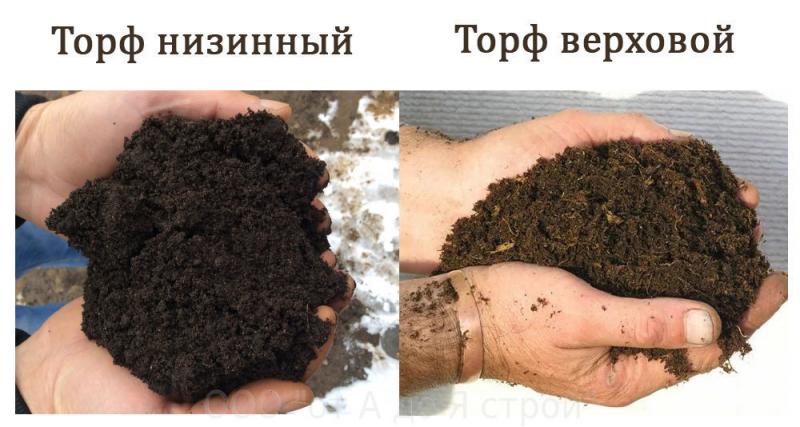 Особенности применения торфа как удобрения