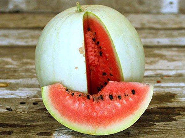 Список самых вкусных сортов арбуза